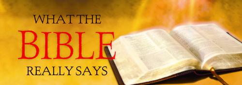 Bible-Says-6x2